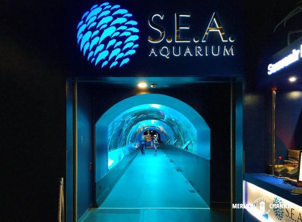 S.E.A Aquarium(シー・アクアリウム)の水中トンネル