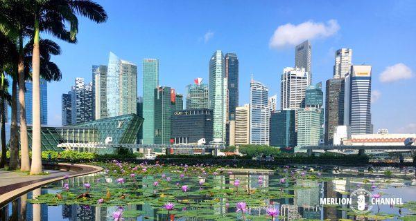 ガーデンシティーと呼ばれるシンガポール