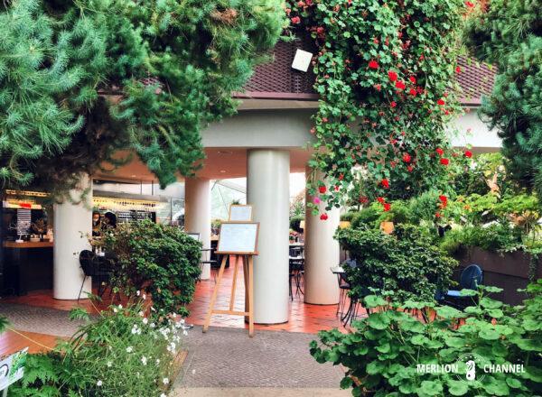緑に囲まれた「フェンネルカフェ(Fennel Cafe)」の店内