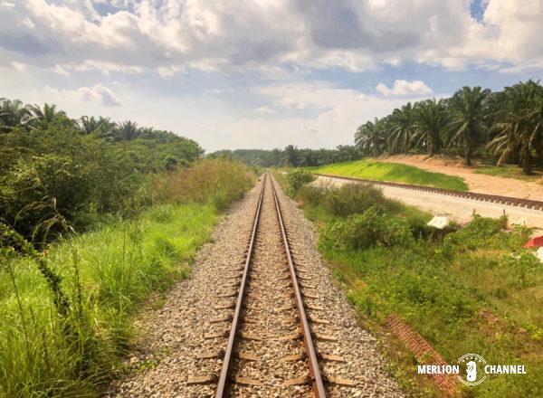 マレー鉄道の線路