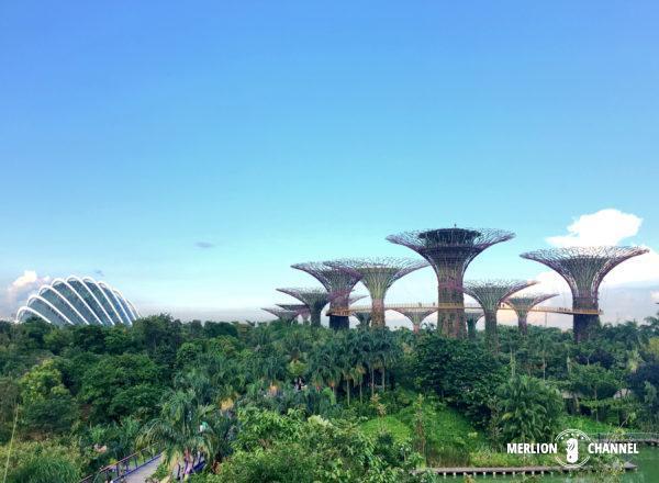 近未来植物園「ガーデンズ・バイ・ザ・ベイ」