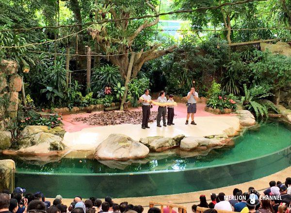 シンガポール動物園のアニマルショー