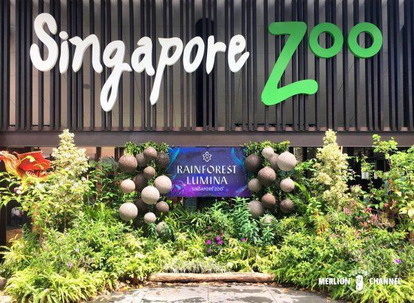 シンガポール動物園の入口広場の看板