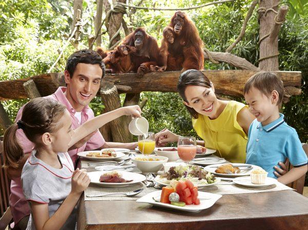 オラウータンと一緒に朝食を食べる「ジャングル・ブレックファスト」